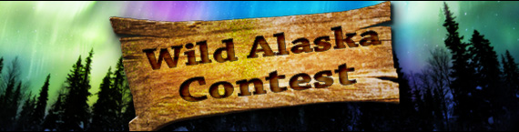 Win your share of $2,500 playing new game Wild Alaska!